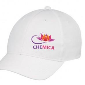 Chemica Aprint - Rouleau de flex imprimable brillant